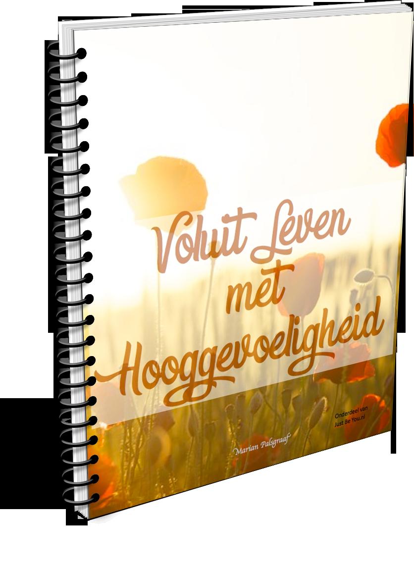 Eboek Voluit Leven met Hooggevoeligheid